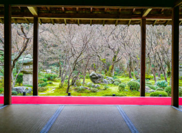 Kyoto #45: 圓光寺【Enko-Ji】