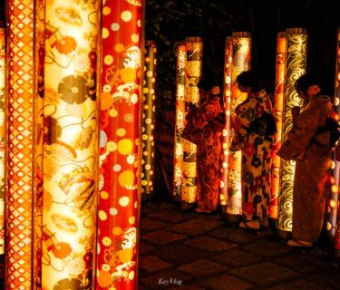 Kyoto #10: キモノフォレスト【Kimono Forest】