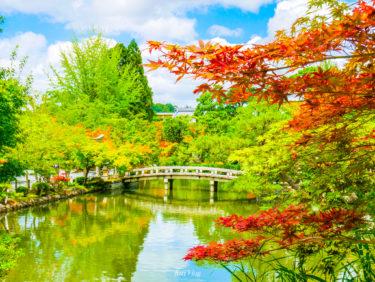 Kyoto #30: 永観堂【Eikan-do】